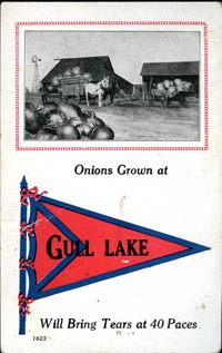 Onions Grown at Gull Lake ...