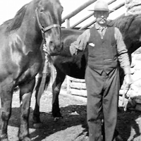George Jr. with Horses
