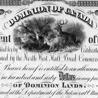 Scrip coupon for $160 (1885)