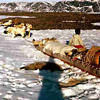 Loaded Trappers' Sled