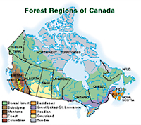 Map of the Boreal Forest, Couresy of Environment Canada